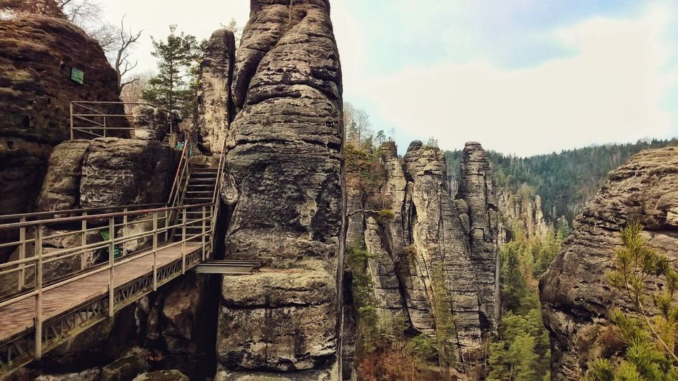 Bastei Elbsandsteingebirge Landscape_Collection Germany🇩🇪 Hiking Lumia1520 Lumiaphotography Nokia  Mobile Photography First Eyeem Photo Basteibrücke Trees