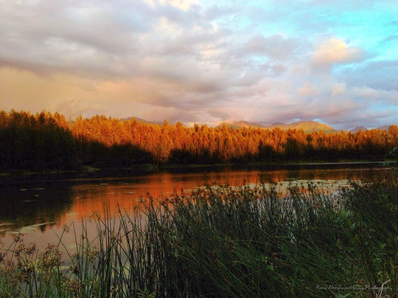 Cheney lake early fall Clouds And Sky Fall Colors Mountains In Background Trees Collection Sunset #sun #clouds #skylovers #sky #nature Beautifulinnature Naturalbeauty Photography Landscape [ [ Reflection In Water Grassflowers