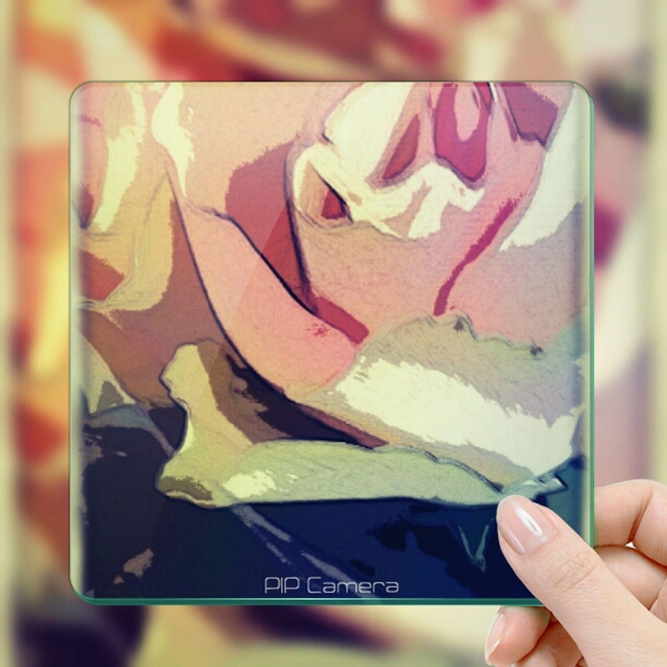 flowerforyou Art Flower Art Instagram #followme #follow #eyeem #awesome #streamzoo #instahub #photo #sigueme #followhim #cute #follow4follow F4f Followback [ Heartflowers photo BloomingGreat streamzoo s Streamzooville