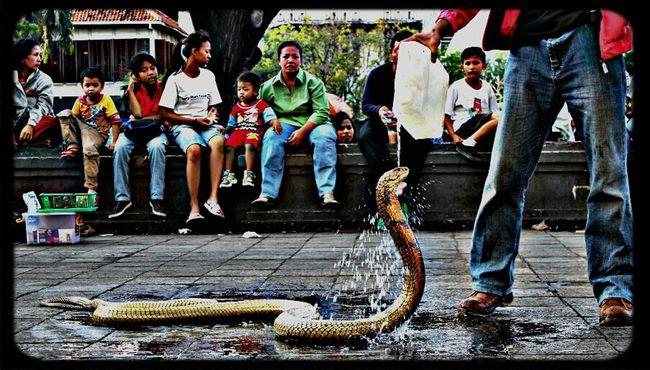 hi.. im take a bath on shower Museum Fatahila Kota Tua Hello World