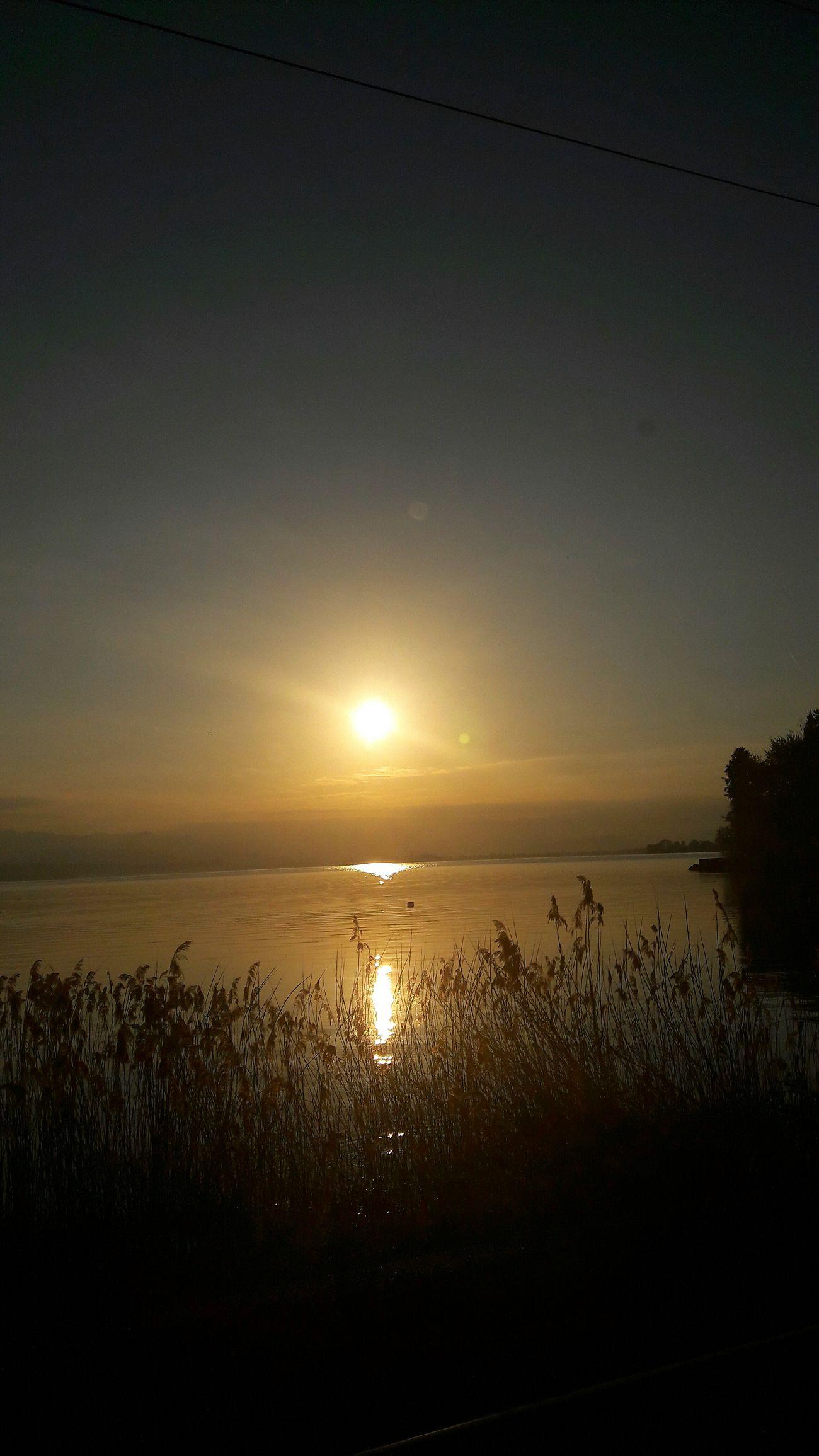 Schweiz Switzerland See Sonnenuntergang Sunrise Orang Orange WOW