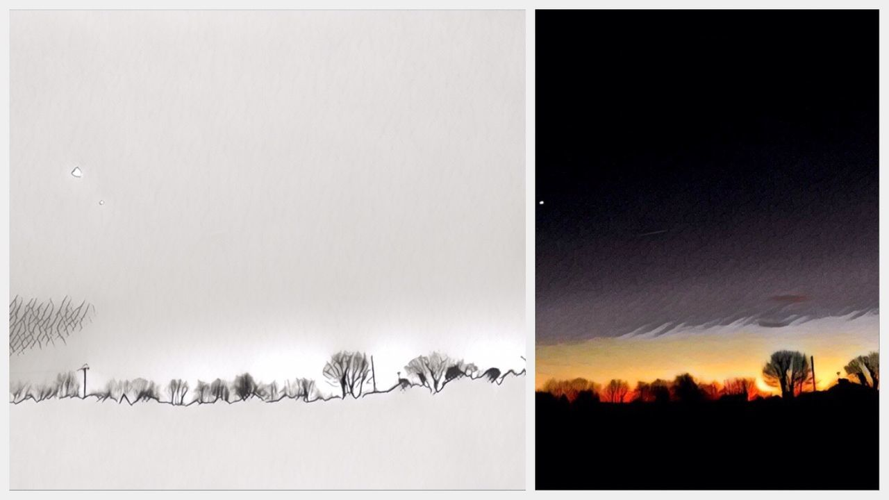 collage, digital composite, nature, tree, beauty in nature, sky, outdoors, no people, multiple image, night