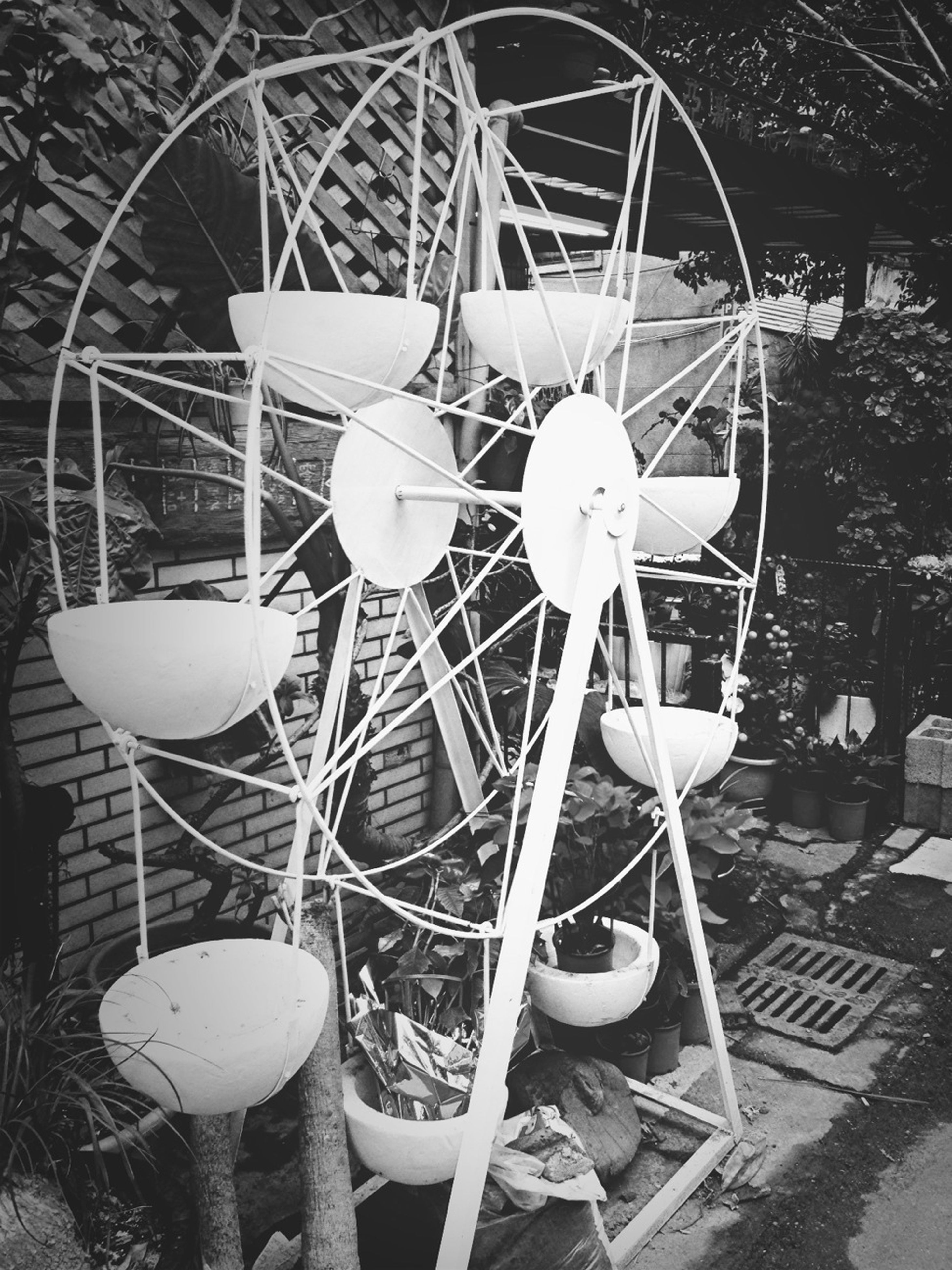 chair, table, absence, plant, day, indoors, no people, sunlight, hanging, tree, decoration, abandoned, still life, flower, growth, front or back yard, empty, circle, lighting equipment