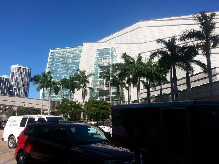 Miami Phantom Of The Opera Palm Trees Architecture