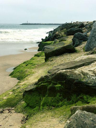 40 Shades of Green 🍀 Beach Beachphotography