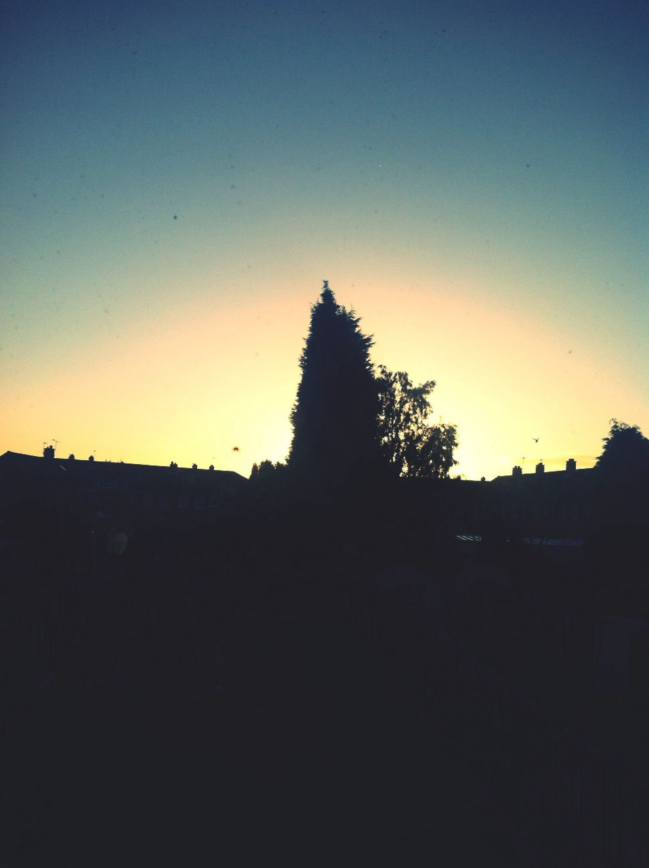 good morning Goodmorning Sunrise