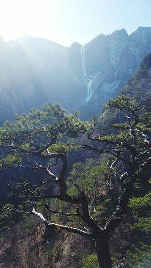 설악산 토왕성폭포
