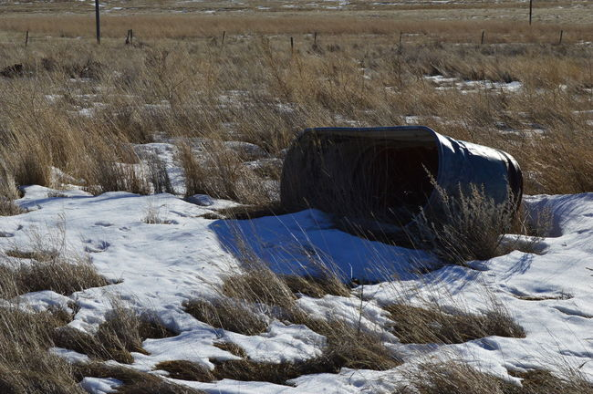Laying around rusting Cold Temperature Day Field Grassy Nature No People Outdoors Winter