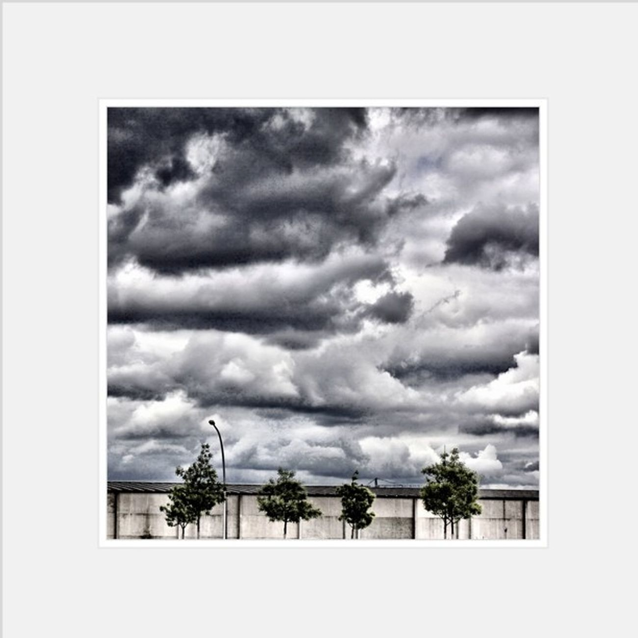 #clouds #sky #tree Clouds Sky Tree Germany Hamburg Deutschland Classiccaseofyes_cloud_challenge