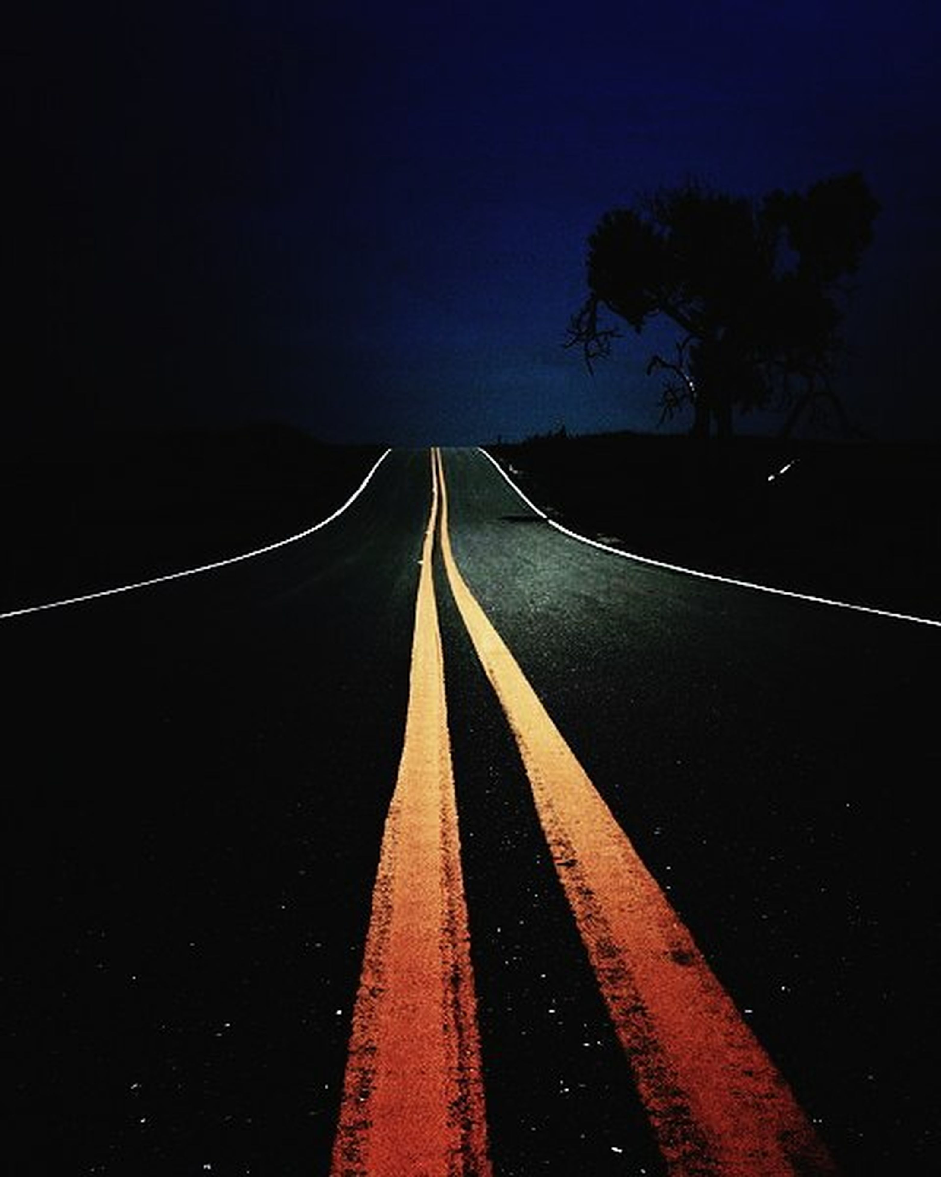 the way forward, diminishing perspective, vanishing point, night, transportation, road, illuminated, clear sky, long, tree, road marking, copy space, outdoors, no people, in a row, street, tranquility, nature, light trail, empty road