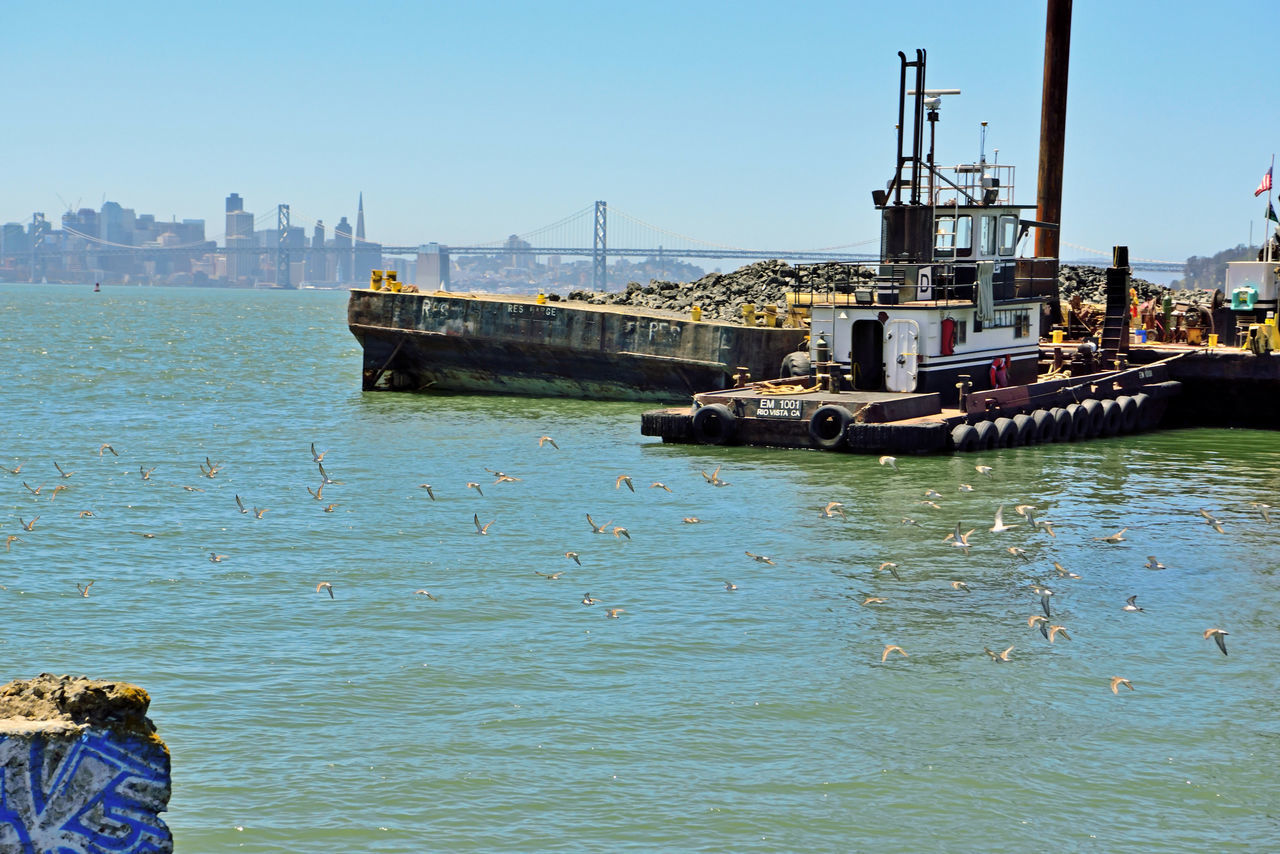 Dredging the Bay 6 Middle Harbor Port Of Oakland, Ca. San Francisco Bay Bay Bridge San Francisco Skyline Tugboat Transamerica Pyramid Building Coit Tower Yerba Buena Island Ferry BuildingDredging Barge Flock Of Seabirds Fly By Birds In Flight