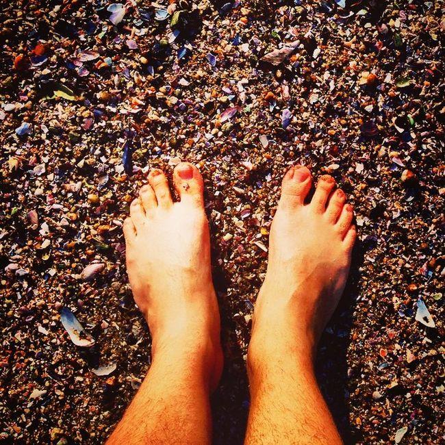 Shellsandsand Ig_sea Feetinsea Feelthesea seashot seasand seaside
