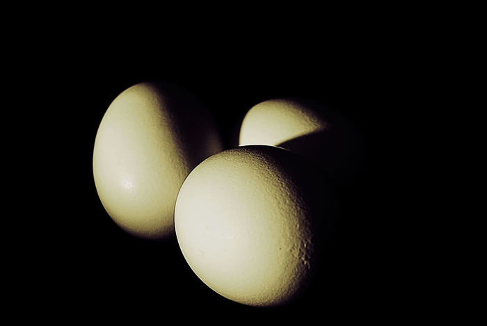 Black Black Background Close-up Easter Egg Ei Food Huevo Huevos Indoors  No People Studio Shot Yellow