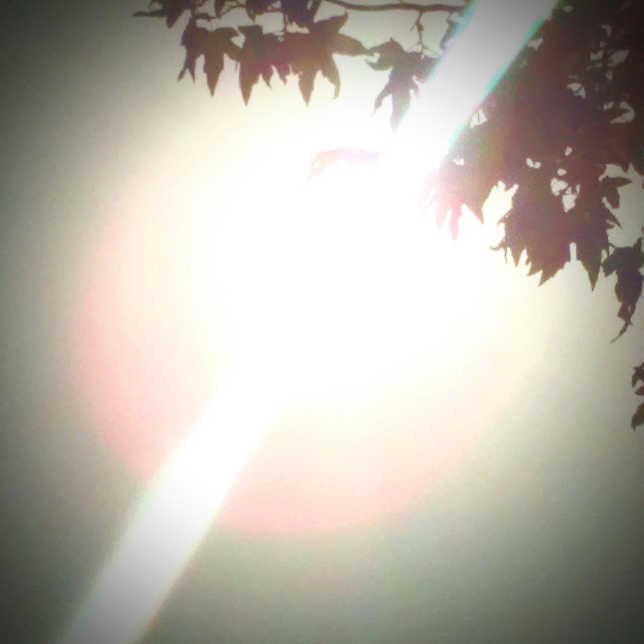 People Watching Sunbathing Walking Around Relaxing EyeEm Best Shots Soaking Up The Sun Listening To Bob Marley