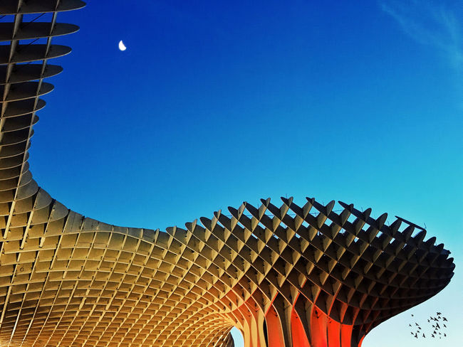 Metropol Parasol, Sevilla The Architect - 2015 EyeEm Awards Mobilephotography IPhoneography NEM Architecture The Moment - 2015 EyeEm Awards Iphoneonly EyeEm Best Shots