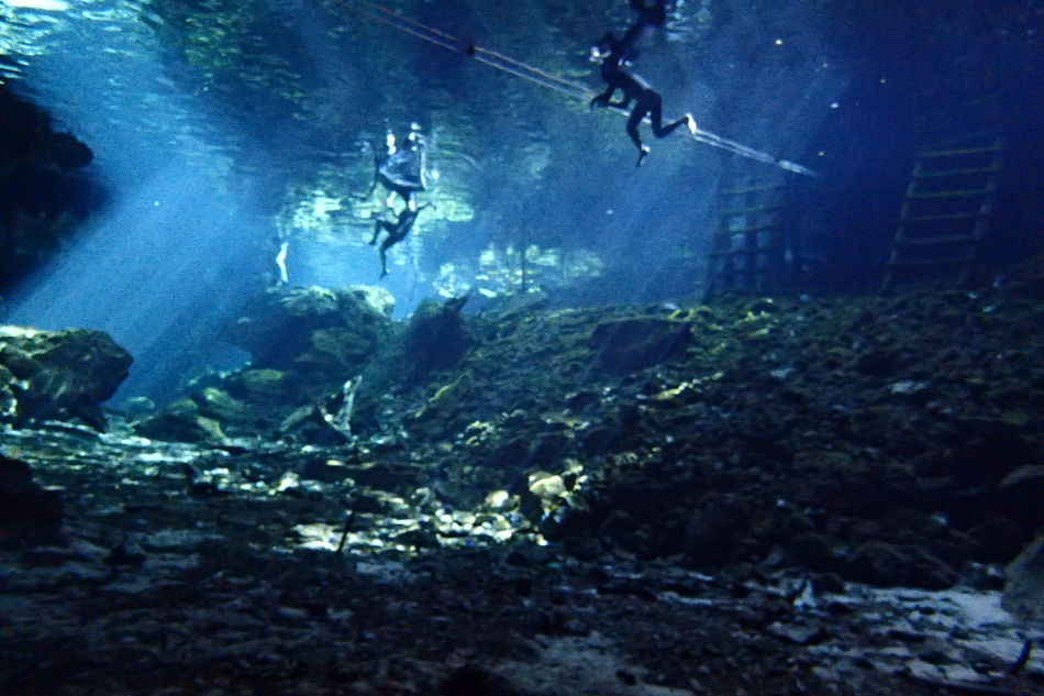 Underwater photography. Cenote in Mexico Cenotes Extreme Sports Mexico People Scuba Diving Underwater Underwater Diving Yucatán, México