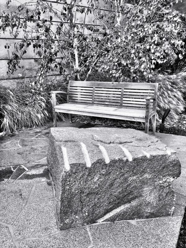 """""""The Alcove"""" Bench Benches Park Bench Benchlovers Alcoves Blackandwhite Black And White Black & White Blackandwhite Photography"""
