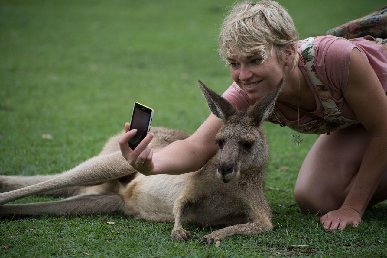 Beautiful stock photos of kangaroo, Australia, Casual Clothing, Caucasian Ethnicity, Cheerful