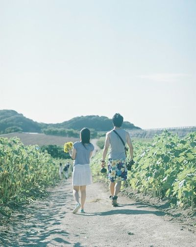 Photography Film Camera Film Photo Japan 120mm Mamiya RB67 Flower Summer