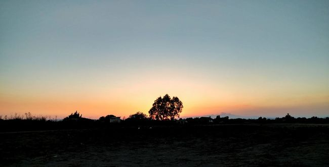 Silhouette Copy Space Sunset Tranquil Scene Clear Sky Scenics Tranquility Landscape Tree Beauty In Nature Nature Non-urban Scene Outdoors Dark Solitude No People Moody Sky Majestic Tall - High Outline