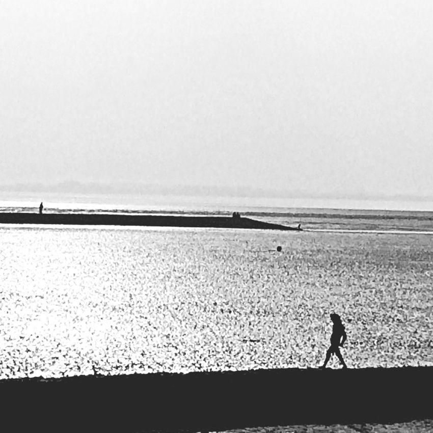 Silhouettes Coastline