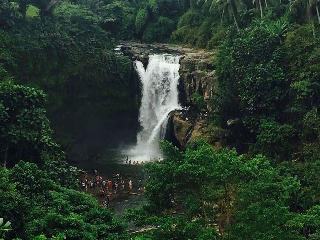 Waterfall Tegenungan Waterfall,bali Bali Gianyar wonderfull
