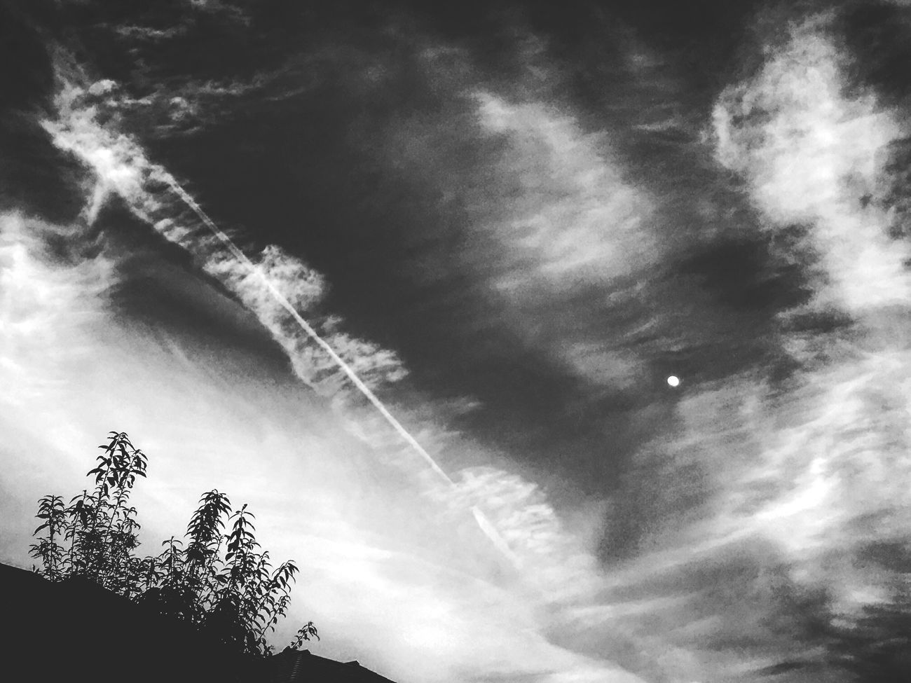 Sky Low Angle View Nature Cloud - Sky Beauty In Nature Day Relaxing Light And Shadow Quiet Moments IPhoneography Getting Inspired Snapshot Monochrome Moon Blackandwhite