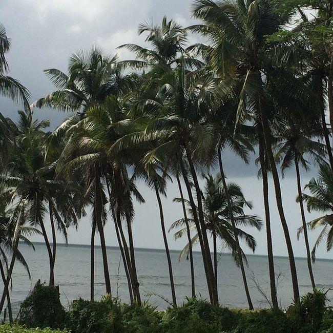 Oh you beauty.. 😍 Goa Fort Aguada