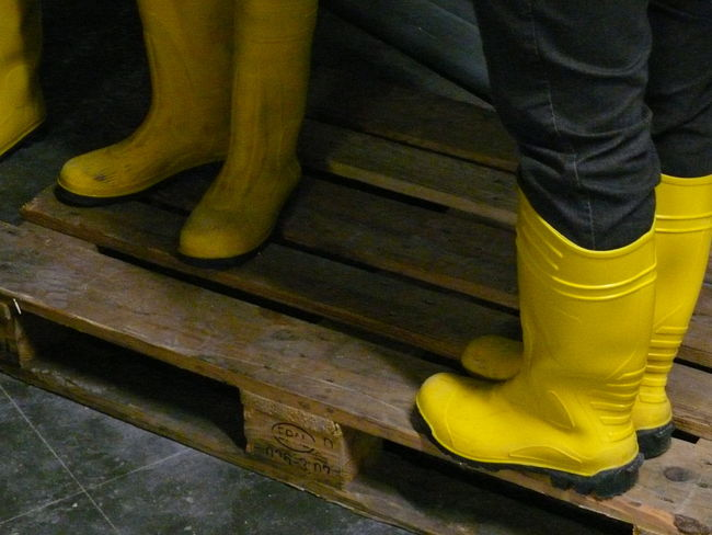Close-up Construction Site Elbe Hamburg Philharmonie Rubber Boots Trench Wood - Material Yellow