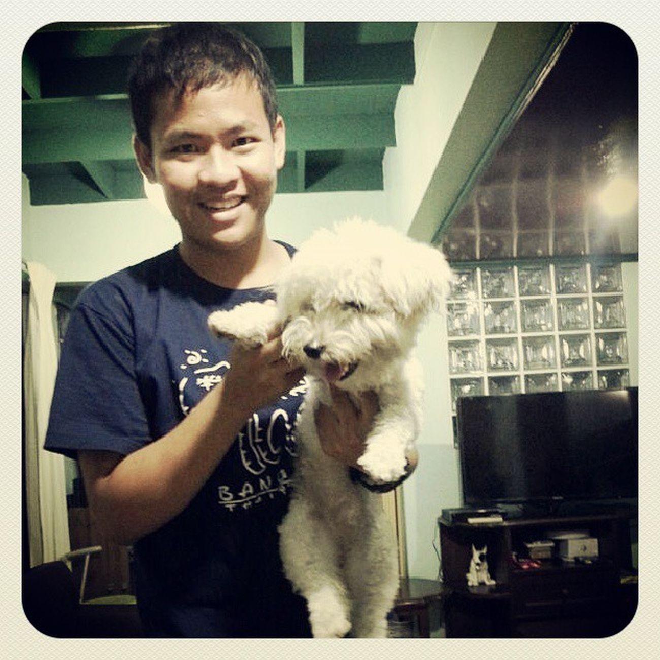 doggysitting ! Bangkok Dog TakeCare  Smile Isaraeli Booba Cute Lovely