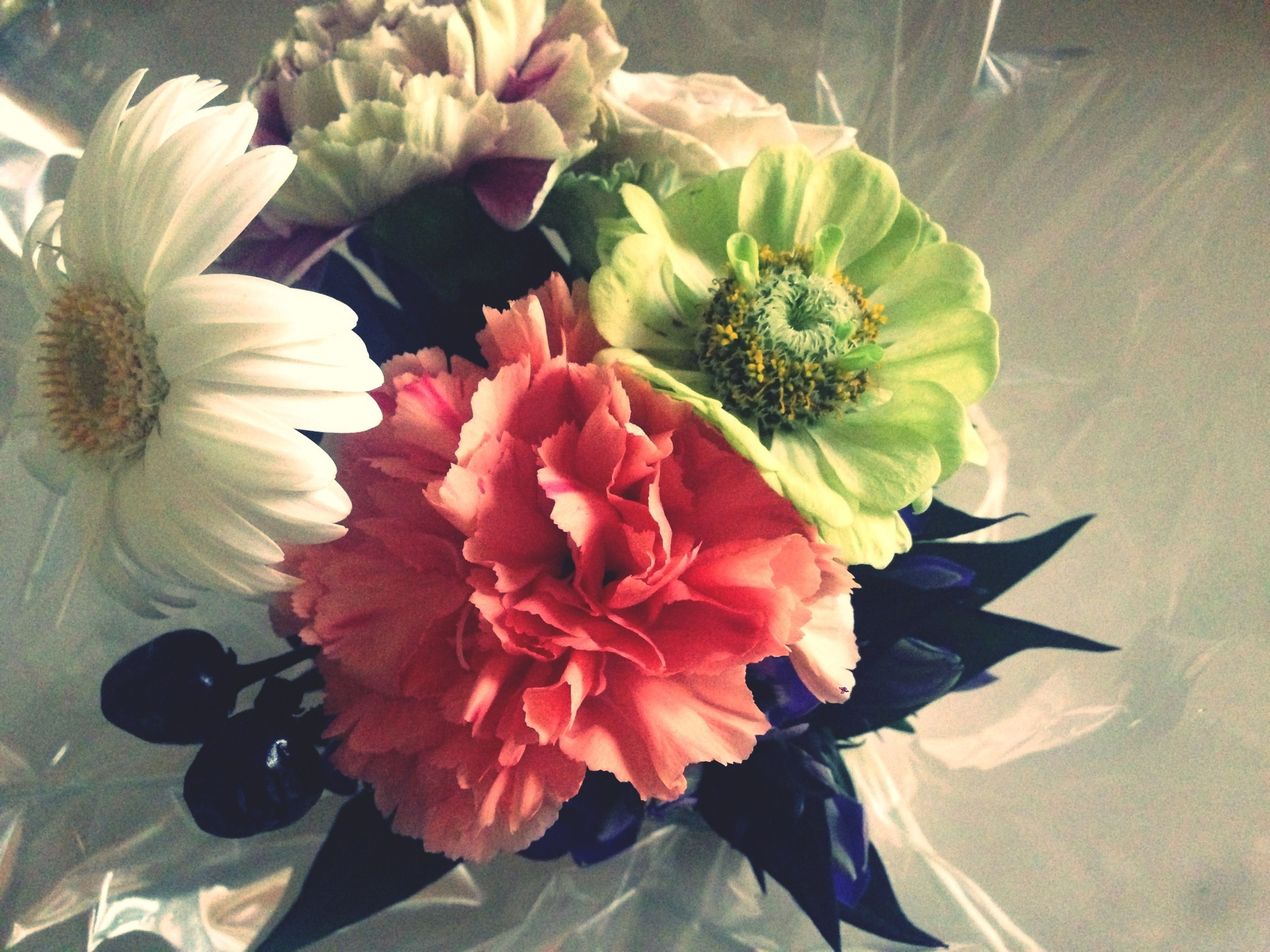 flower, petal, freshness, indoors, flower head, fragility, vase, beauty in nature, high angle view, table, close-up, rose - flower, bunch of flowers, bouquet, flower arrangement, nature, growth, plant, decoration, potted plant