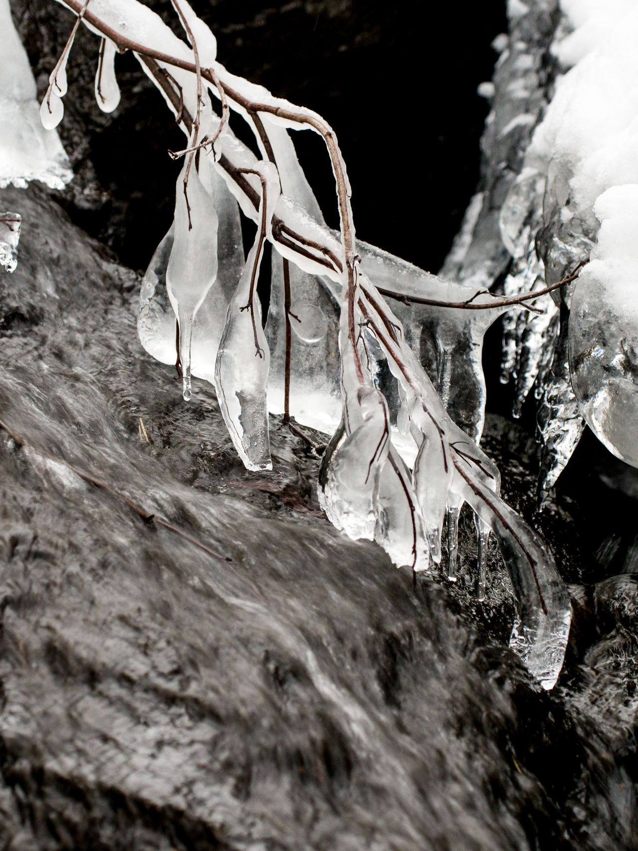 Ice above stream Close-up Ice Ice Beads Ice Branch Icy Twigs Nature Snow Winter Winter Stream In #copenhagen