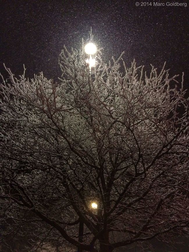 """""""Galaxian,"""" Sangertown Square Mall, Town of New Hartford, New York, 11/13/14 Trees Winter Snow Light Night Textures And Surfaces Mobile Photography"""