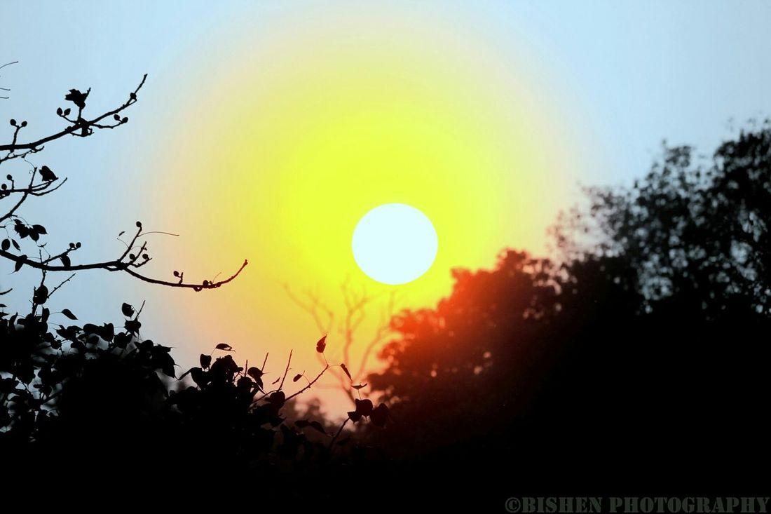 """The Magnificient Sunset"""