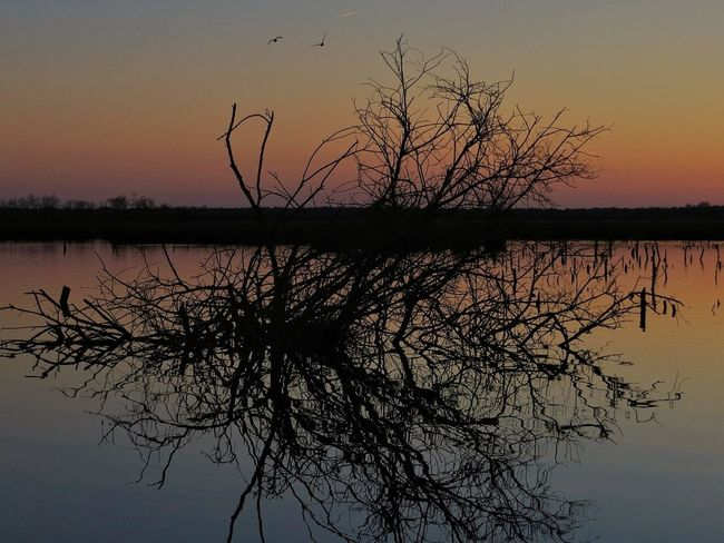 Sunset Nature Sky Helloworld