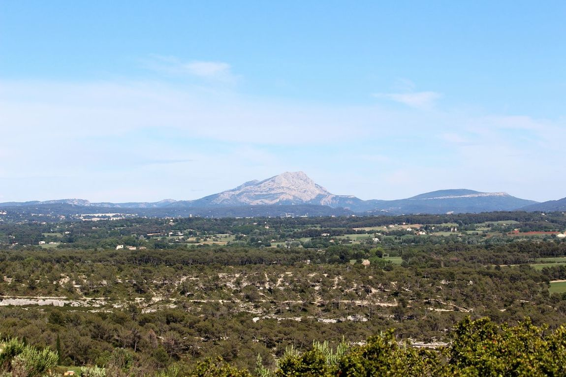 Mountain Nature Arbre Beauty In Nature Tree Colline Paysage De France Montagnes 🌲🍃 Montagne Sainte Victoire Vue Sky Beauty In Nature Tranquility Tree Outdoors Tranquil Scene Mountain Range Nature