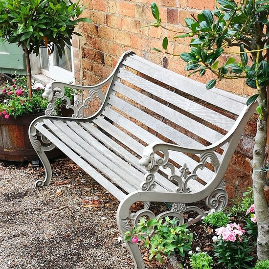 Empty Plant Absence Day No People Chair Outdoors Relaxation Nature