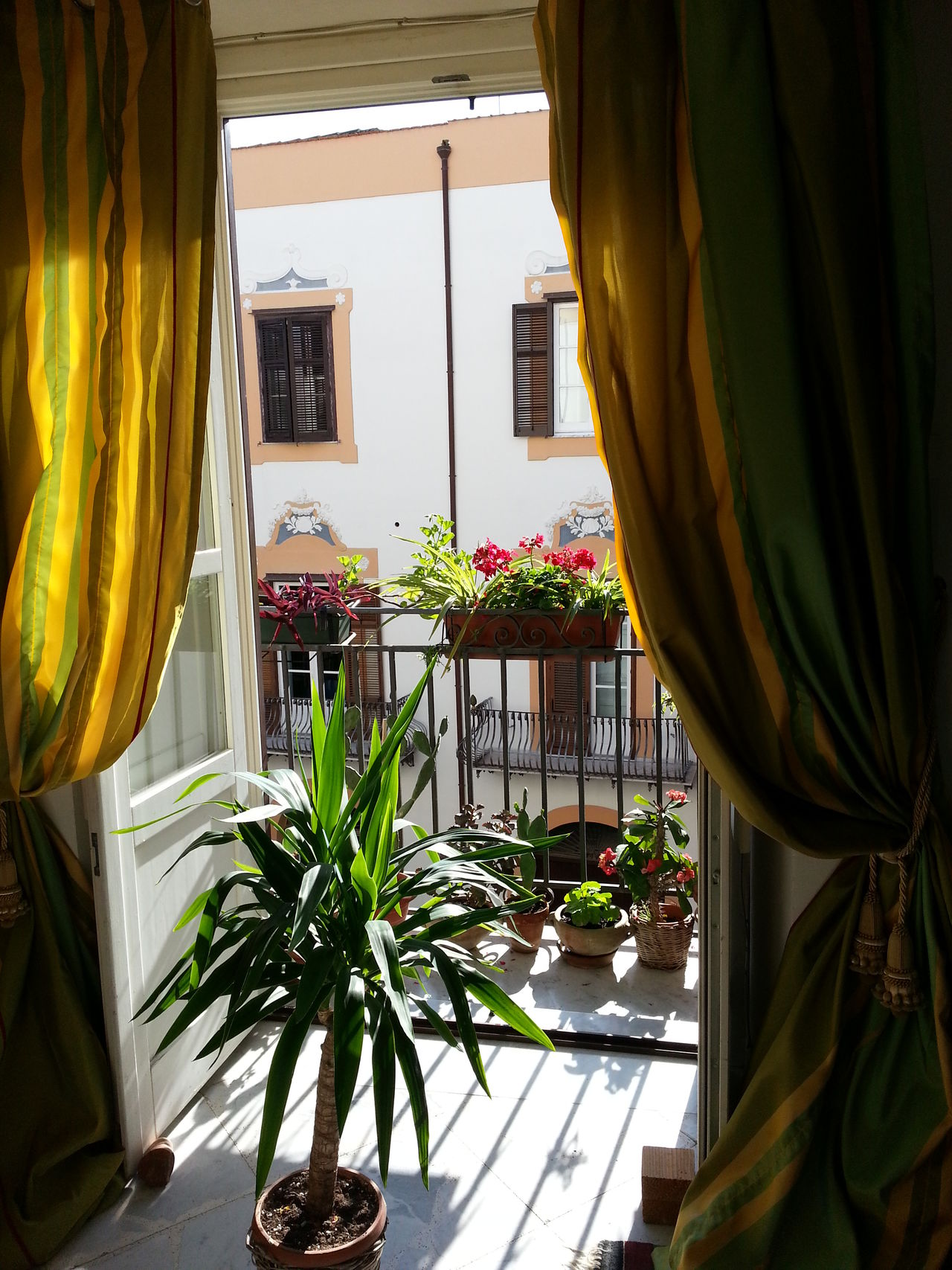 A Terrace With Flowers Architecture Building Exterior Built Structure City Day Flower Italian Interior No People Palermo Palermo Shooting Palermo, Italy Plant Residential Building Trough The Curtains Window Yellow Courtains