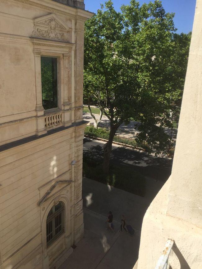 Gard Taking Photos Colors Photography Summertime Summer Views Nîmes Juillet Urban Summer ☀ France