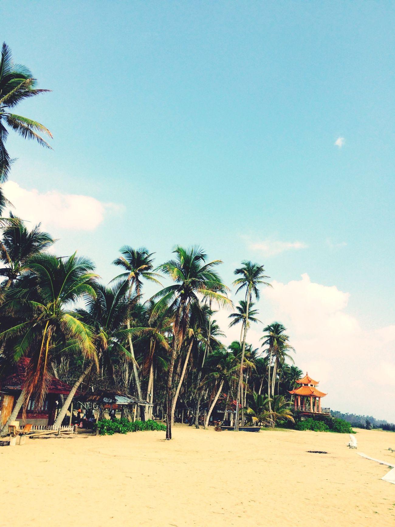 Being A Beach Bum Sunshine Sandcastles
