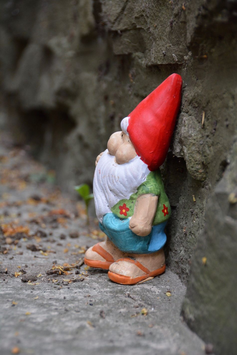 Gartenzwerg Childhood One Person Day High Angle View Real People Full Length Outdoors Red Close-up People Garden Goblin Gnome Garden Gnomes