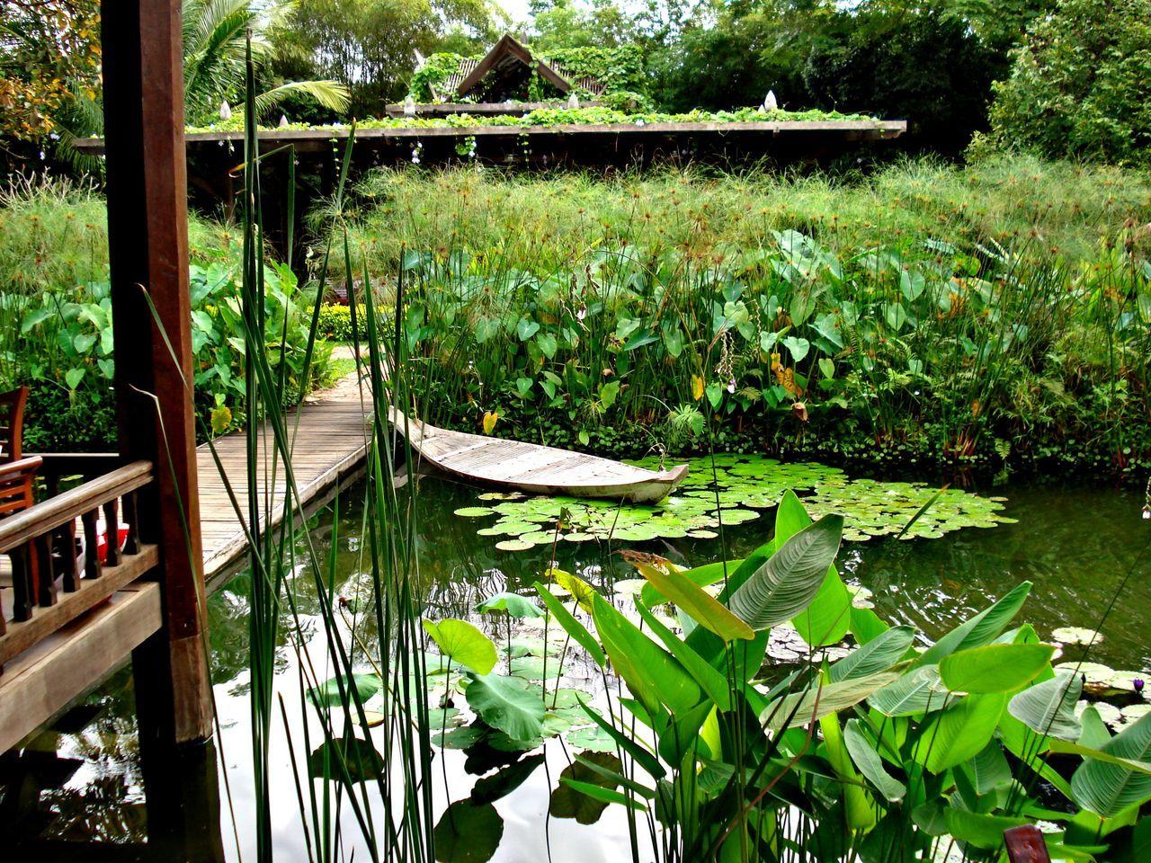 Cambodian garden ASIA Garden Garden Architecture Flowers Plants Bamboo Water Boat Decoration Green Nature Zen Garden Building