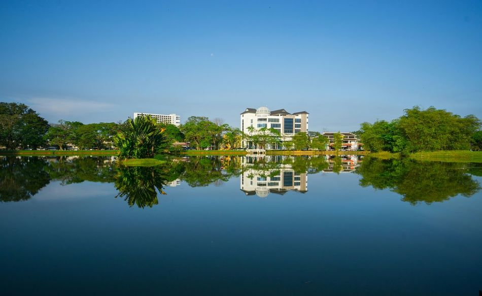 Calm reflection Reflection Calm Tasik Taiping Ipoh Perak Malaysia Taiping Lake Travel Destinations Calm Fine Art Photography Hidden Gems  Color Of Life Colour Of Life Color Palette