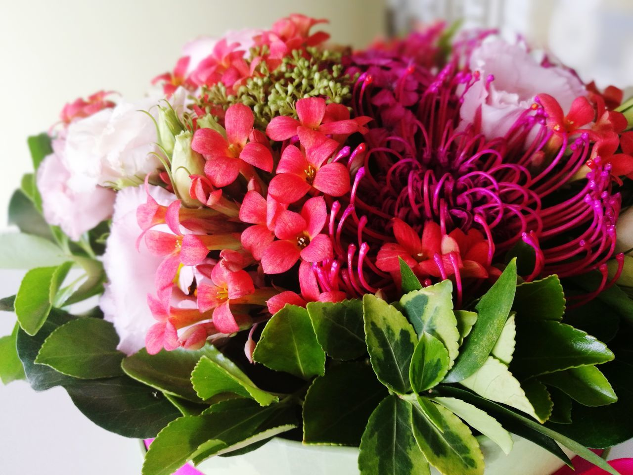 Flower Freshness Flower Head Plant Leaf Nature No People Fragility Close-up Bouquet Beauty In Nature Peony  Day Indoors  Colorful Grateful Goodbye International Women's Day Mothersday Mother's Day Honour