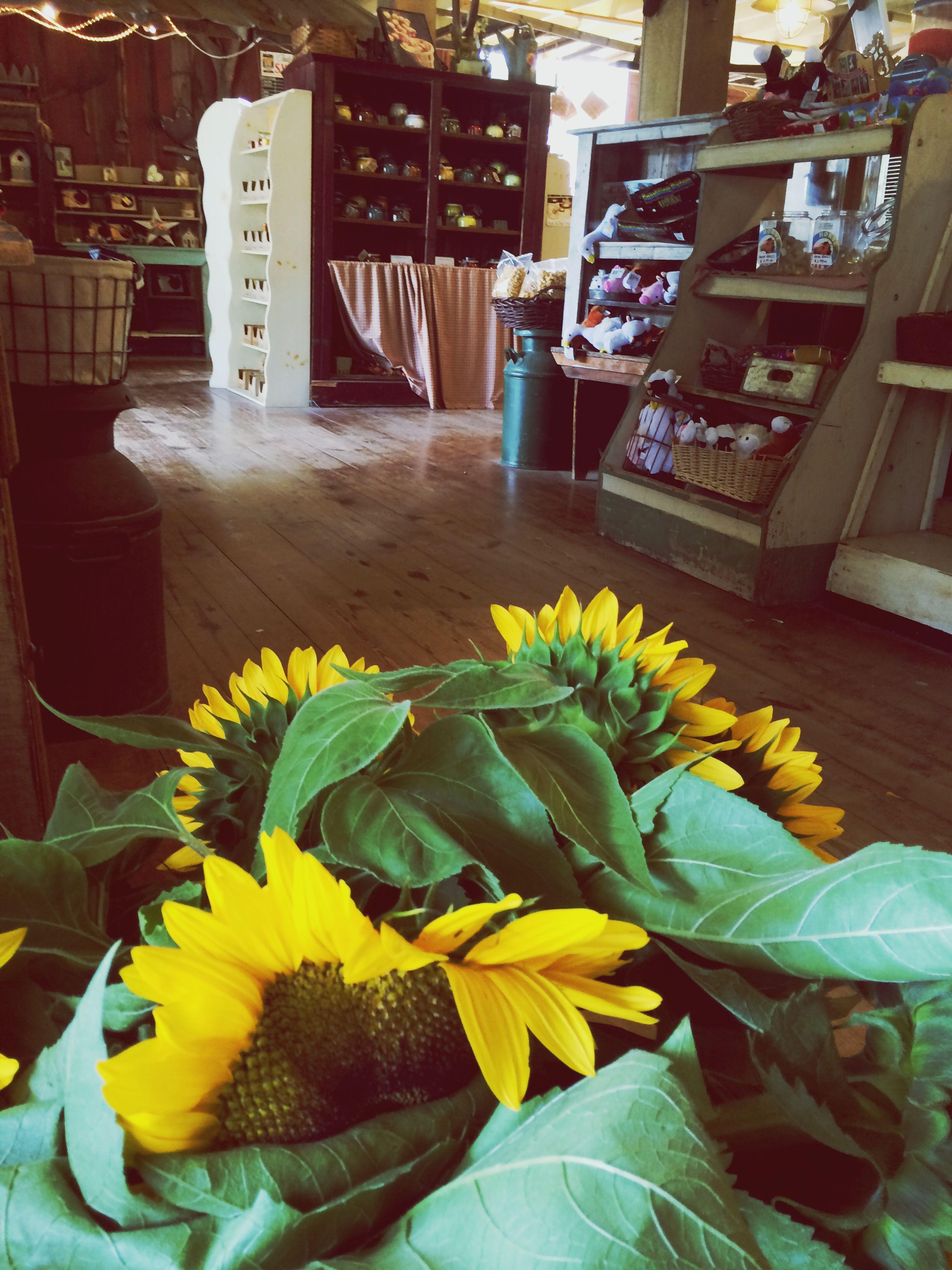 Farmers market and sunflowers? Lovely Sunflower Farmers Market
