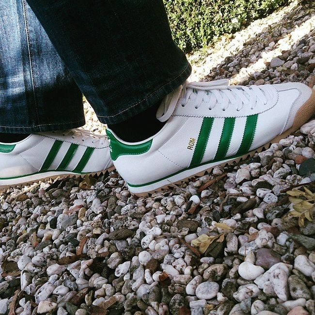 Todaystrainers _casualclobber Teamtrefoil Trefoil Adi_gallery Adidasonly_ Casual_district Casualclobber_obsession Casual The_oap_casual Adidas Adidasoriginals _casual_clobber Adorethestripes Adidasgallery Adidasrom Casualmind Adidasramon085