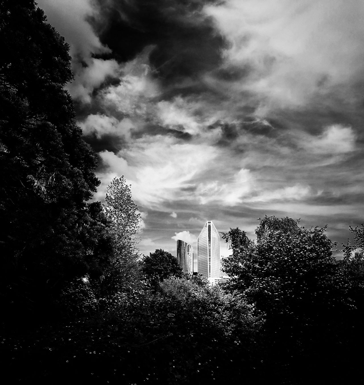 Nature Or Civilization Civilization Nature Skycrappers B&W Collection B&WPhoto B&w Photo Blackandwhite Photography Cloud - Sky Sky Grave Ombres Et Lumières Monochrome Collection Monochrome Photograhy B&w ombres Et Lumières B&W Photo Lifestyle No People Building Exterior Outdoors Hauts-de-Seine 92 France🇫🇷 HuaweiP9Photography The Street Photographer - 2017 EyeEm Awards