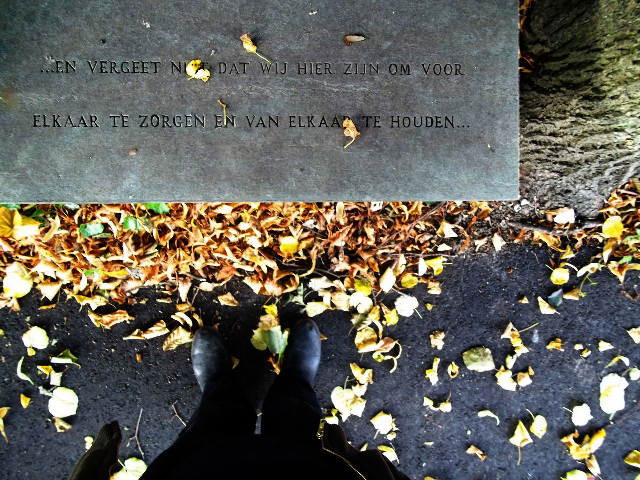 From My Point Of View Readingan Inscription on a Bench at the graveyard Translattion :. ..... and don' t forget that we we are here to help and love each other....
