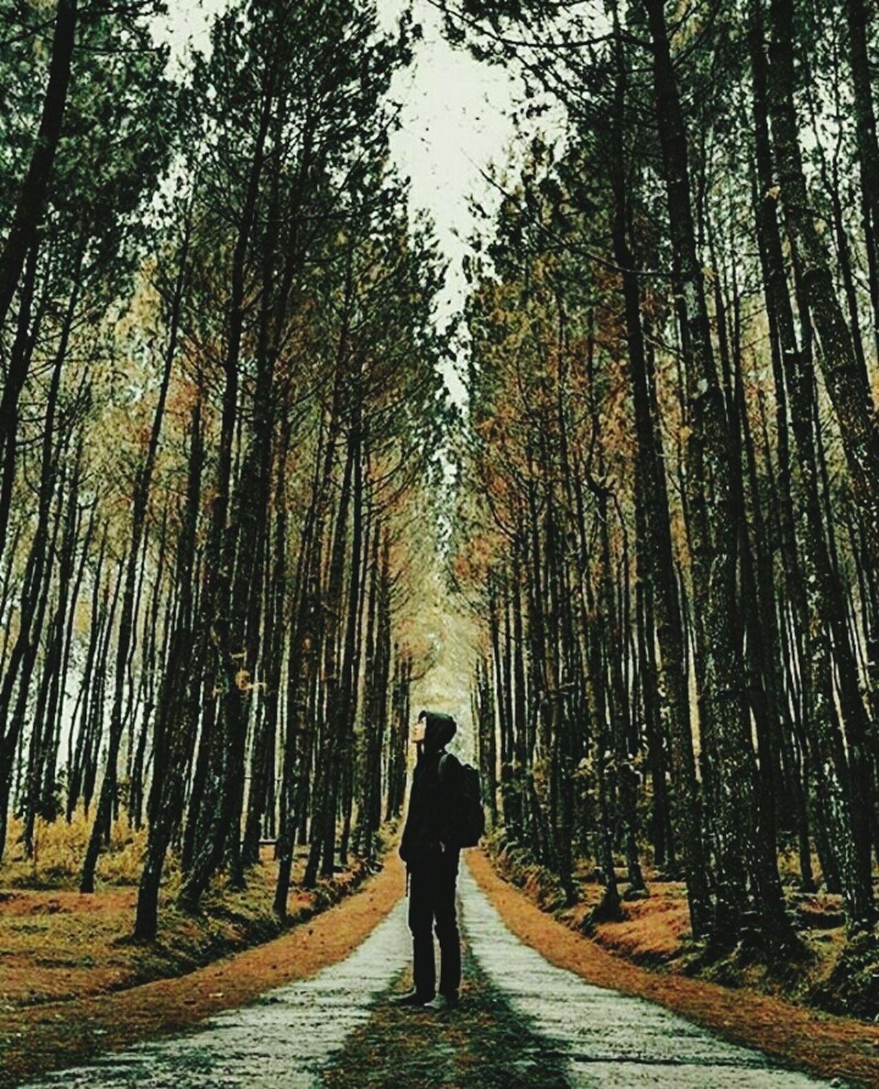 Check This Out Hanging Out That's Me Explore ExploreEverything Hi! Relaxing Magelang Ayokemagelang Jawatengah Exploring Trees