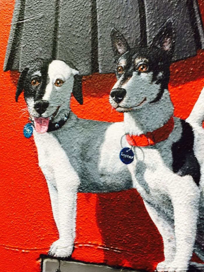 Photographic Approximation Dogs In Art  Streetart/graffiti